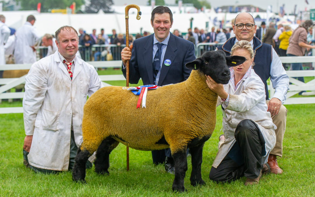 Great Yorkshire Show – 2019