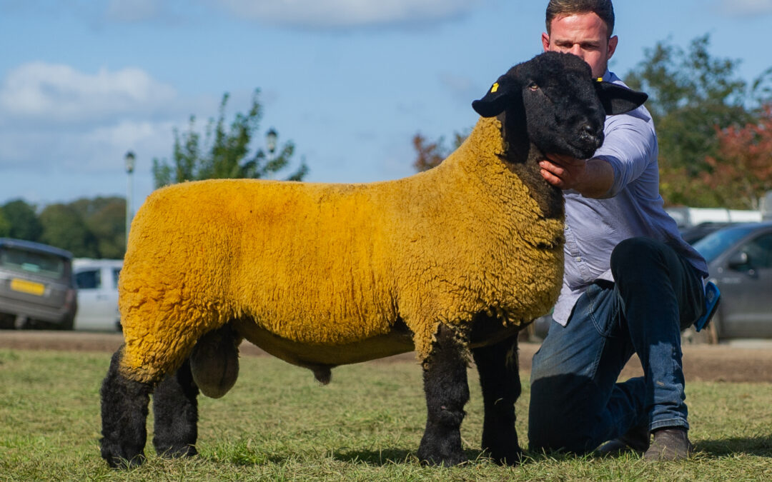 Kelso Show and Sale – 2019