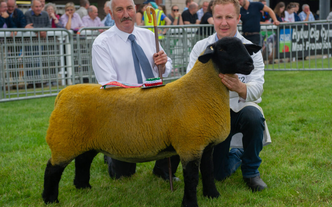 Royal Welsh Show – 2019